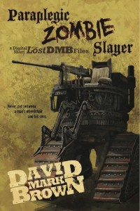 zombie slayer cover low